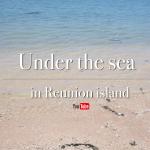 Under the sea in Réunion
